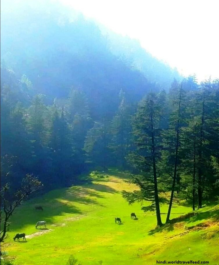 TOURIST PLACES IN UTTARAKHAND