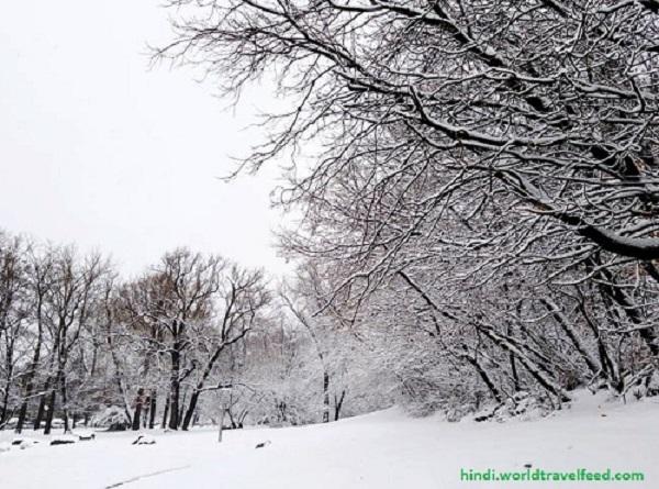 Harsil-in-Winters