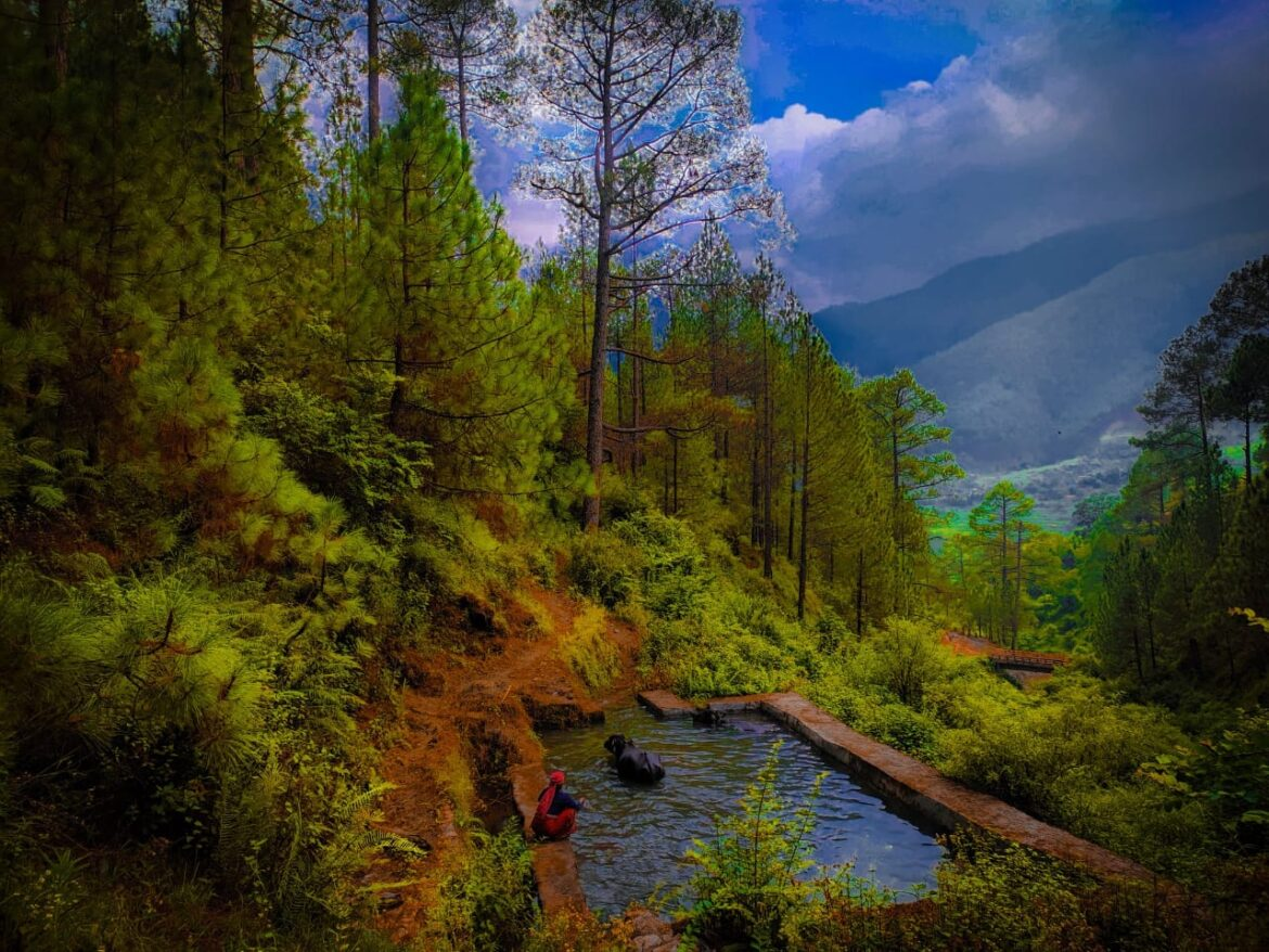 10-Tourist-Places-to-visit-in-Ranikhet